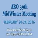 ARO_meeting